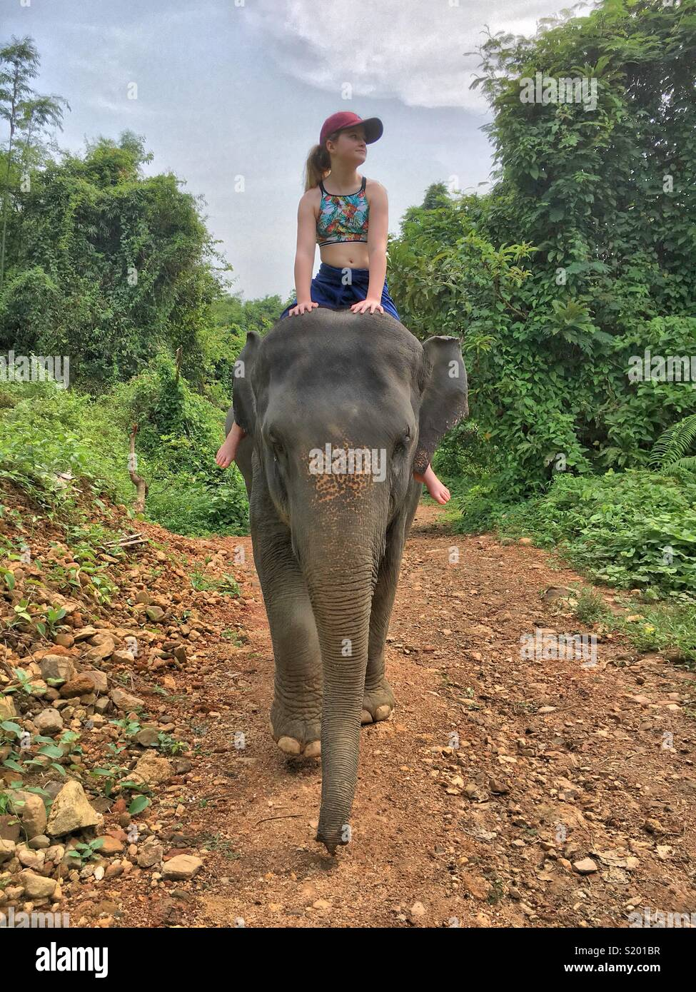 Ragazza giovane cavalcare un elefante - anteriore ON Immagini Stock