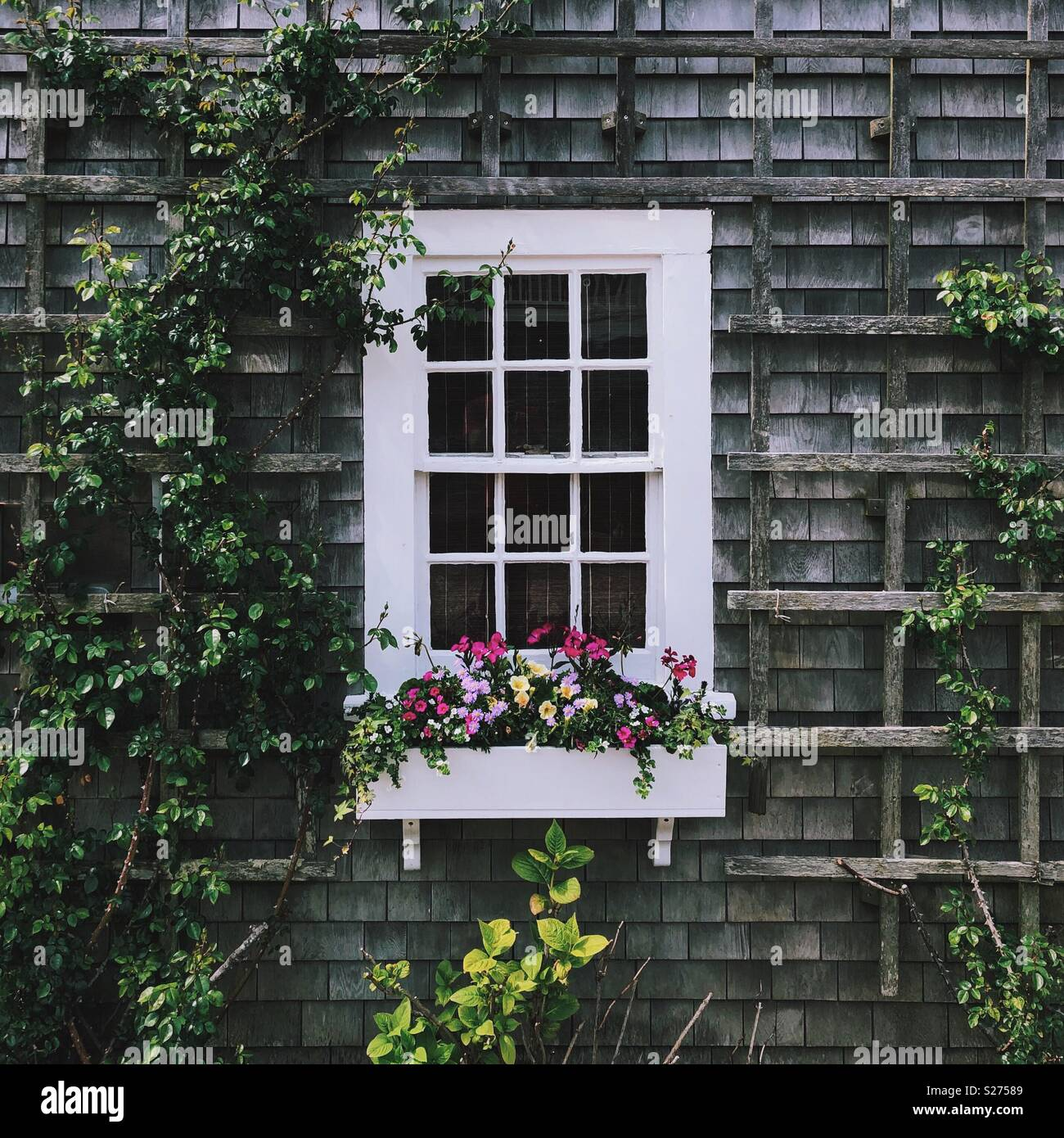 Nantucket Cottage Immagini Stock