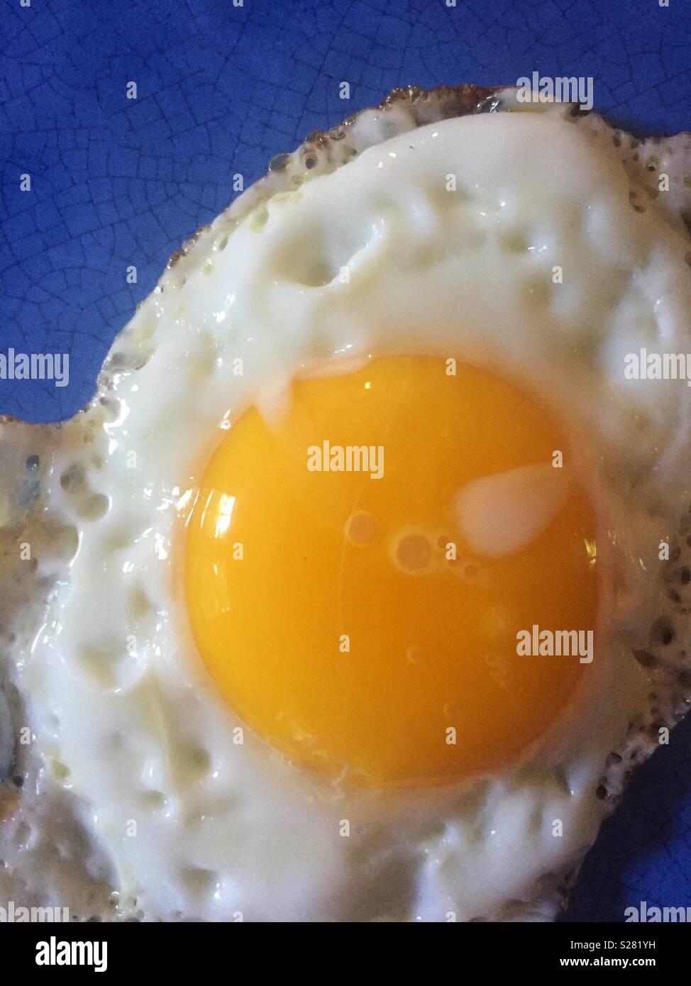 Primo piano di uovo fritto sulla piastra blu Immagini Stock