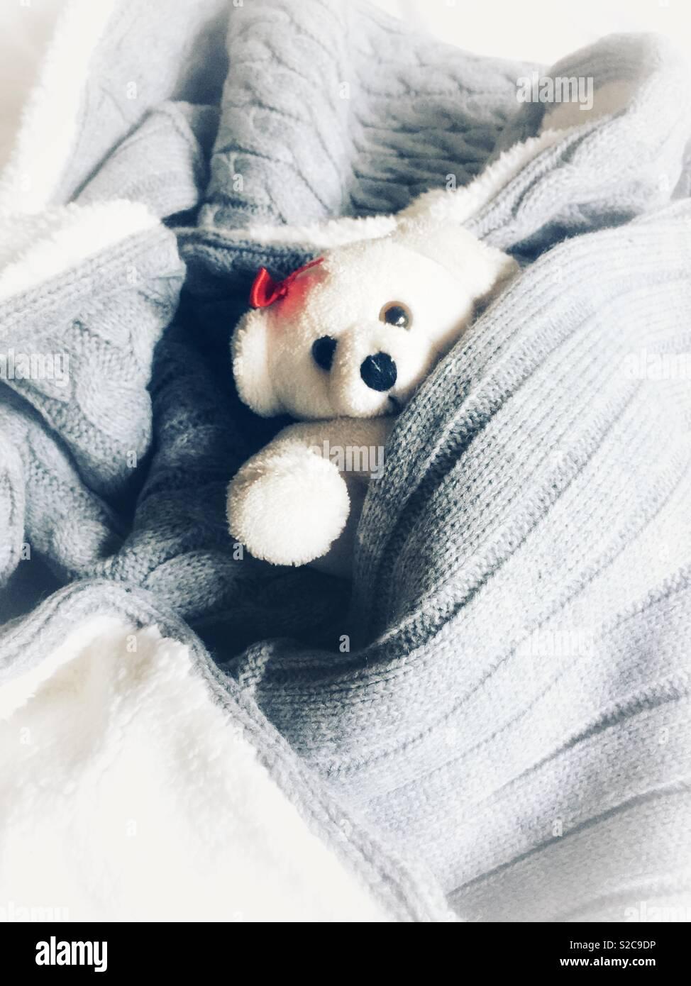 Bear Snowy Snuggling All'interno Polar White Di Teddy Toy Un Y7yb6fgv