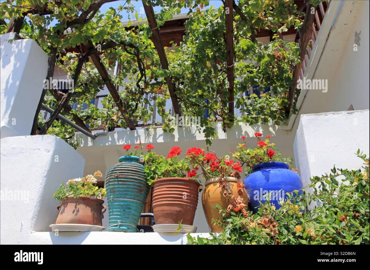Il mio giardino greco foto immagine stock alamy