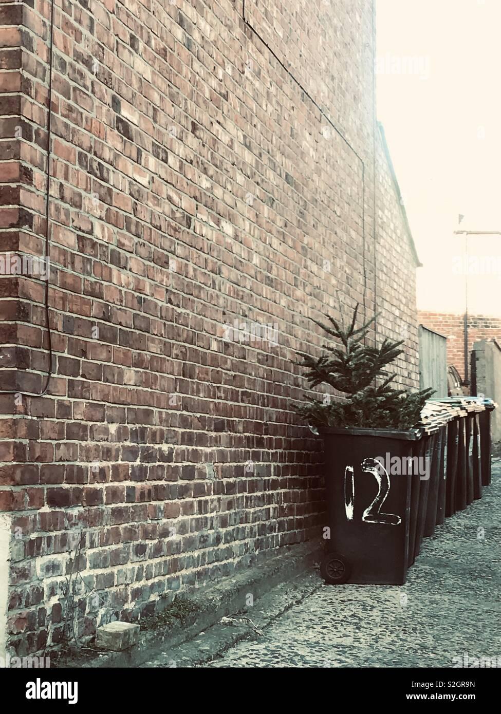 Dodici giorni di Natale Foto Stock