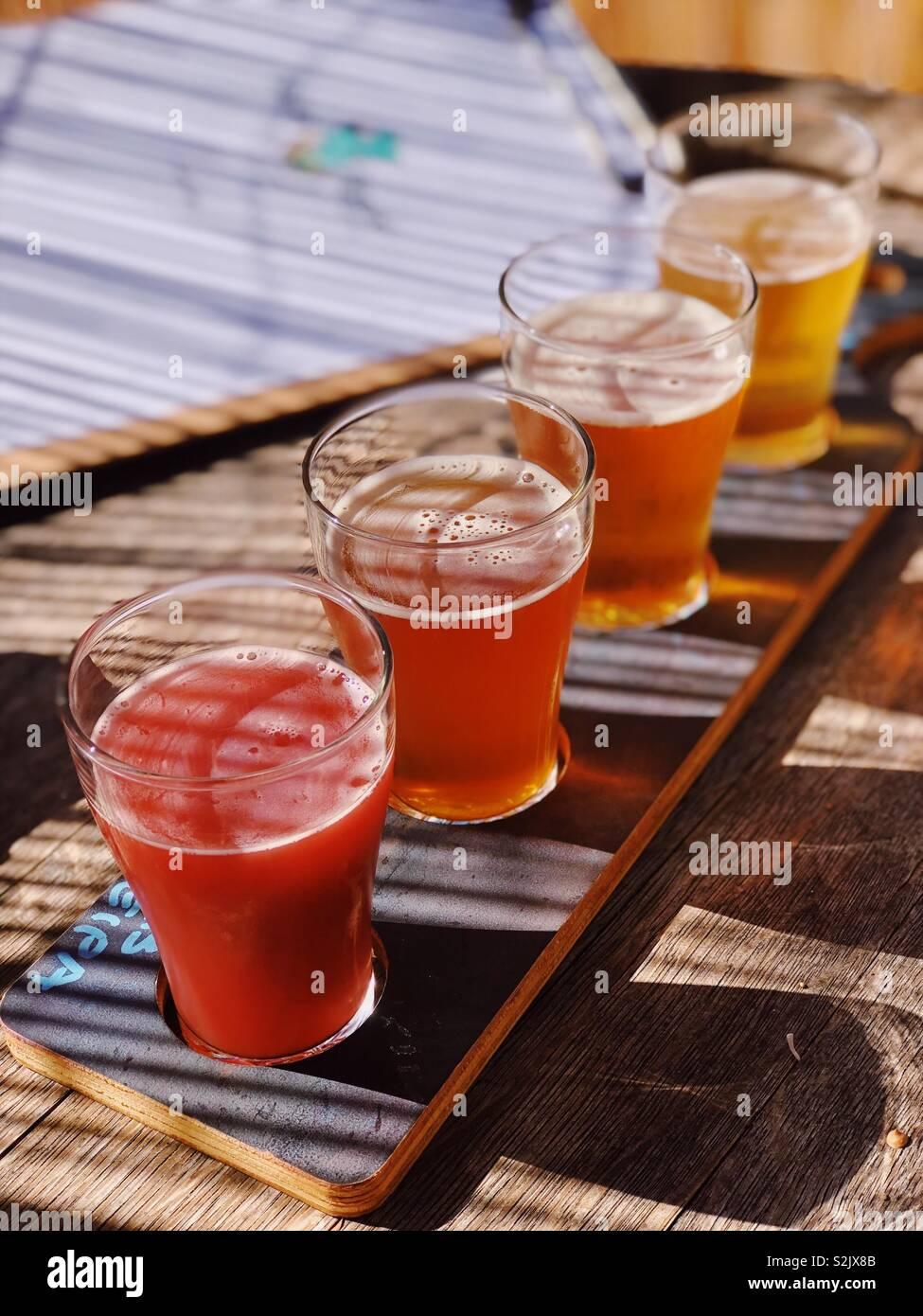 Paletta di birra Immagini Stock