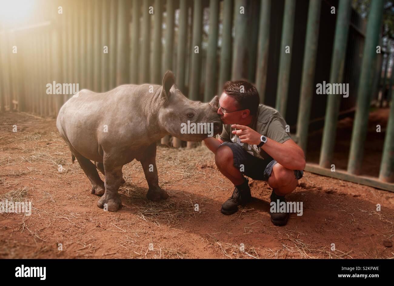 Giovane uomo kissing baby rinoceronte Foto Stock