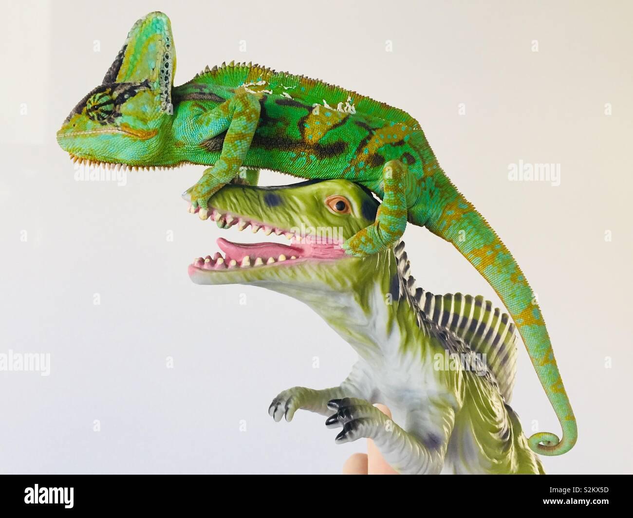 Chameleon & Dinosaur Foto Stock