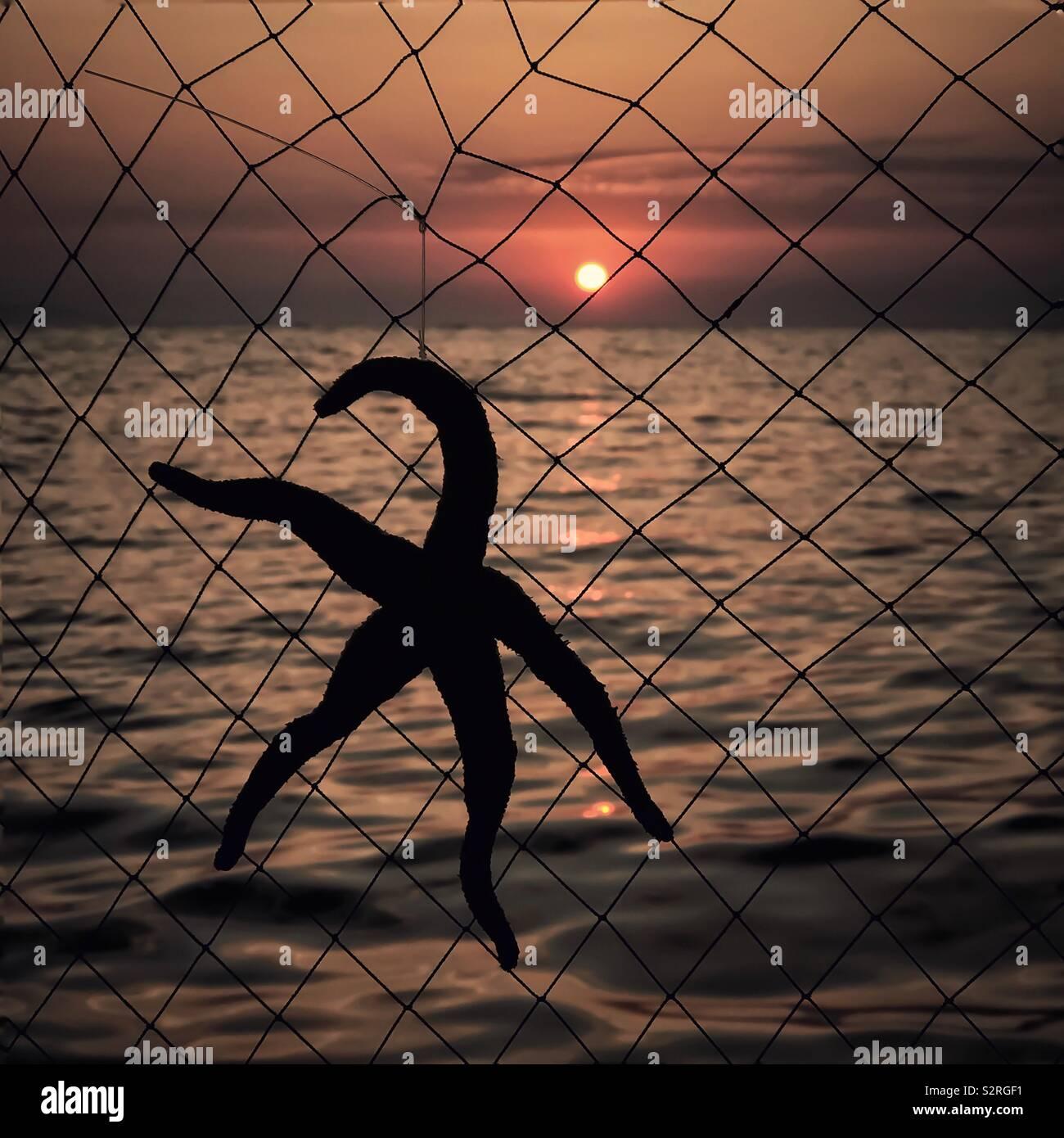 Una stella di mare decorazione appesa al netto di un recinto contro un tramonto sul mare Mavişehir Turchia Foto Stock