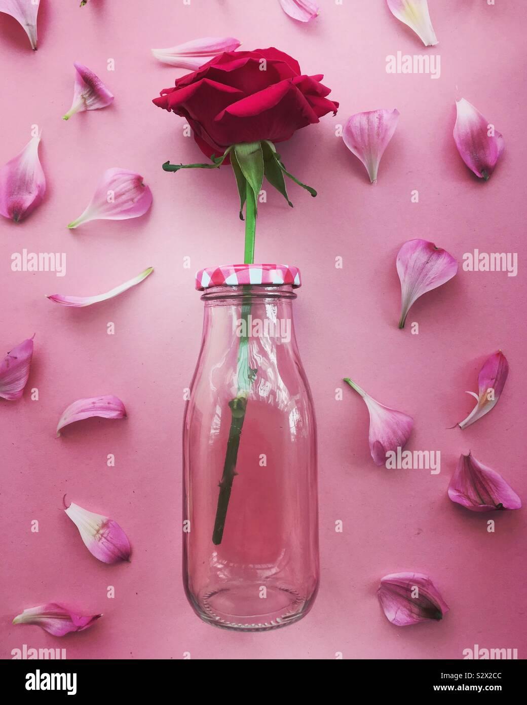 Rose in una bottiglia di vetro circondato da petali Foto Stock