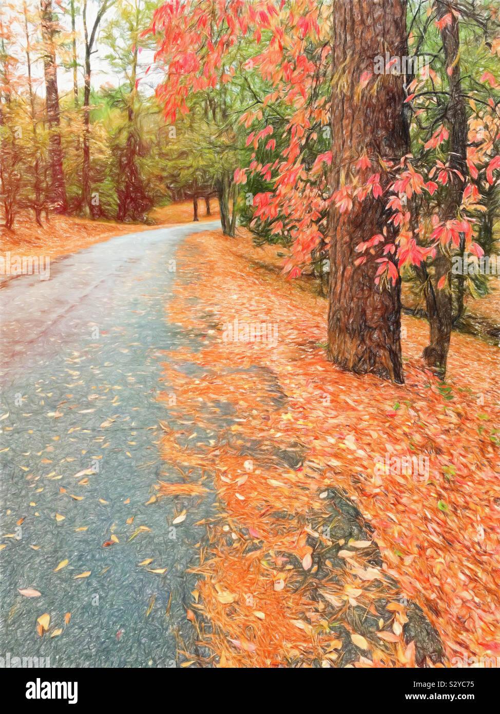 La stagione autunnale e le foglie cambiano colore lungo un lastricato sentiero escursionistico a Flat Rock Park in Columbus Georgia USA. Foto Stock
