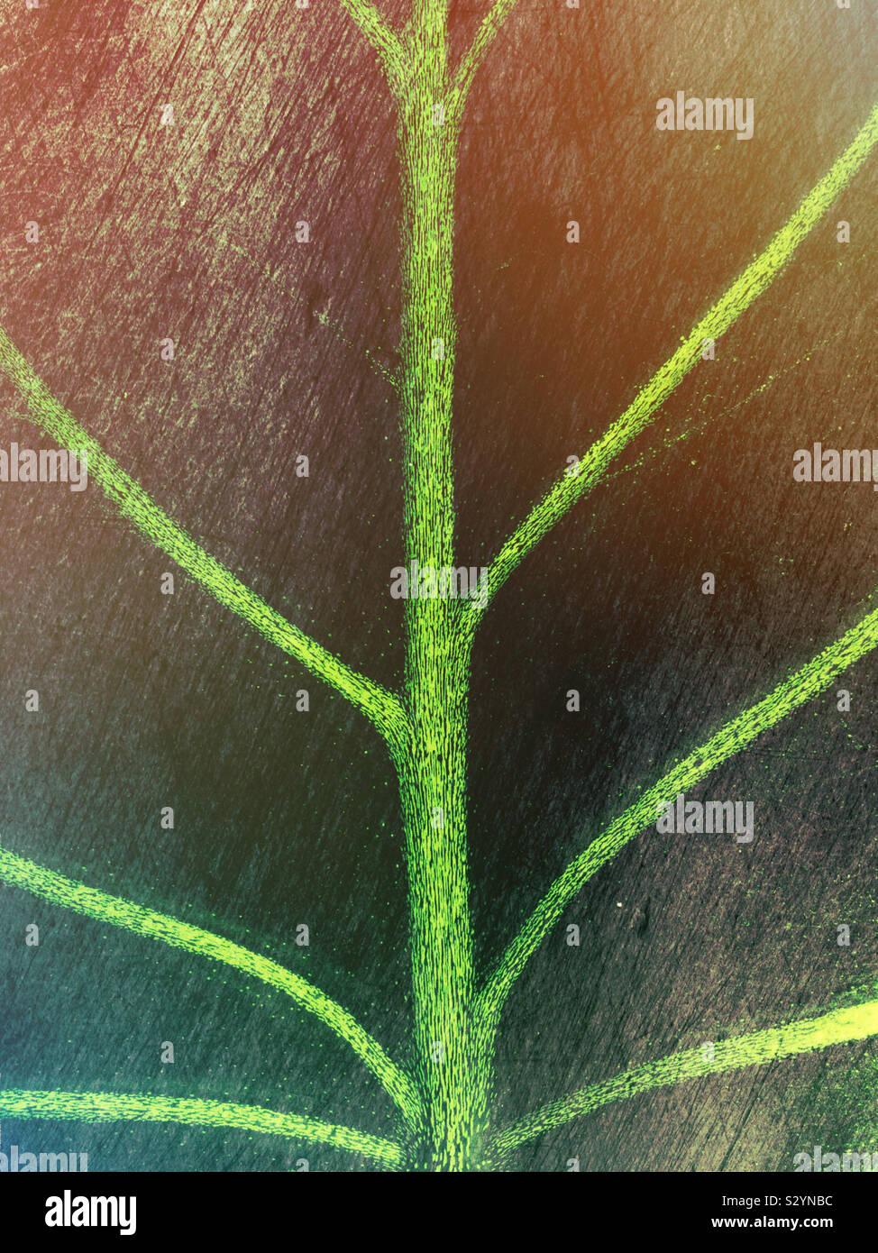 Estremi simmetrici closeup di tropicale a foglia verde che mostra il design della lama di balestra, il controfiletto e le vene. Questa immagine ha un effetto testurizzato. Foto Stock
