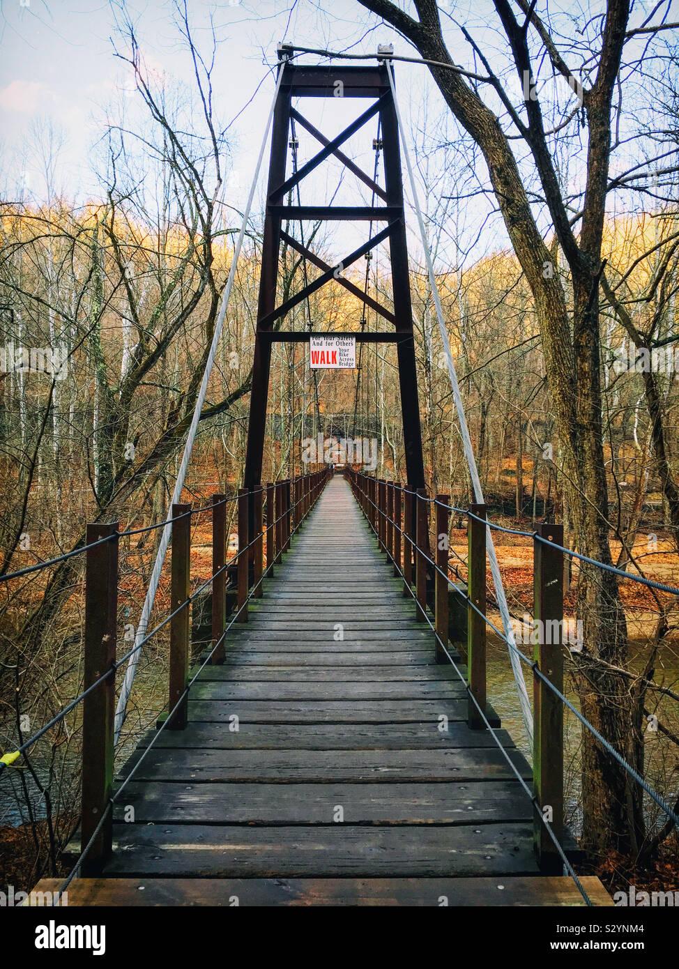 Il Patapsco ponte oscillante si trova nella valle di Patapsco stato parco nel centro di Maryland negli Stati Uniti. Si tratta di un ponte di sospensione costituito da un ponte di legno sostenuto da cavi di grandi dimensioni. Foto Stock