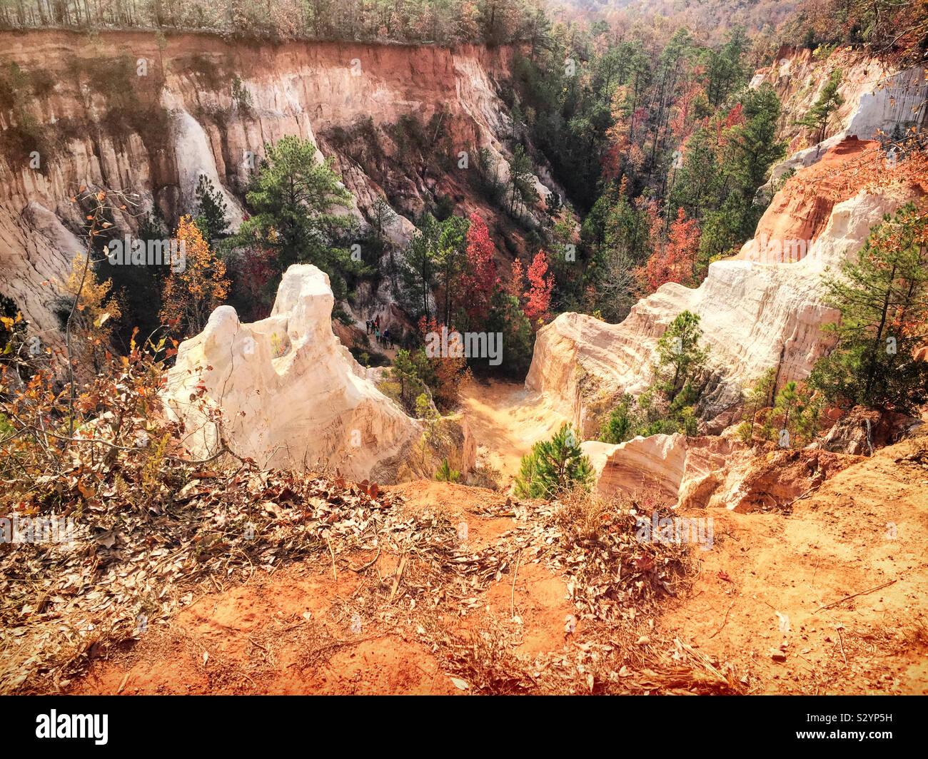 La provvidenza Canyon in Lumpkin Georgia USA è anche noto come il piccolo Grand Canyon. Si tratta di una delle sette meraviglie naturali della Georgia. Foto Stock
