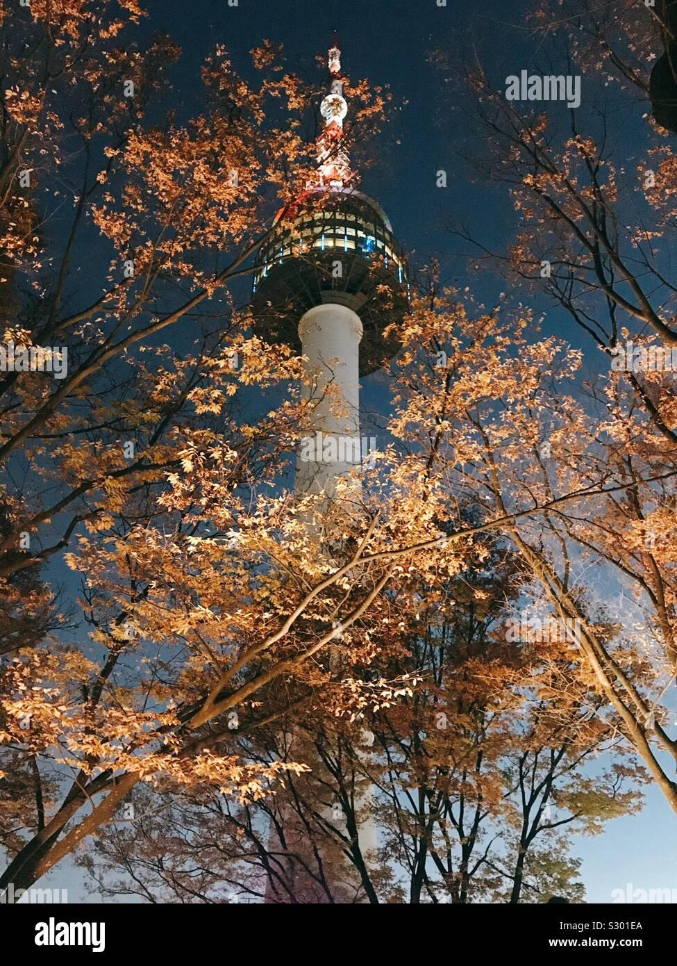 Torre Foto Stock