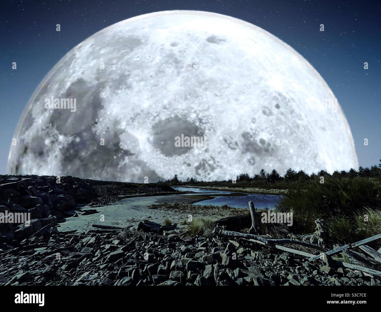 Enorme luna che sorge sopra la spiaggia coperta di driftwood Foto Stock