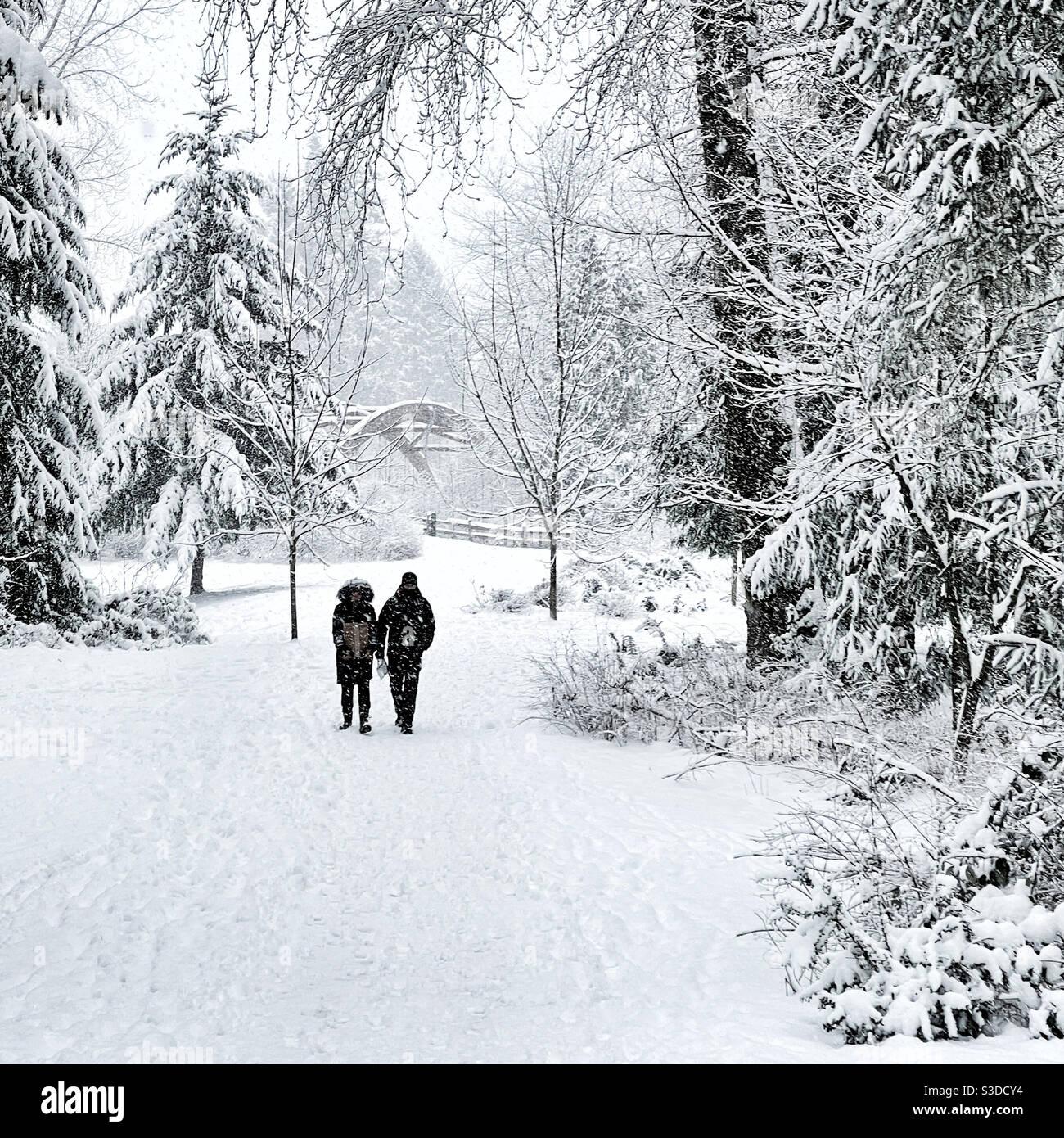 Coppie passeggiate attraverso il parco durante la tempesta di neve a Issaquah, WA Foto Stock