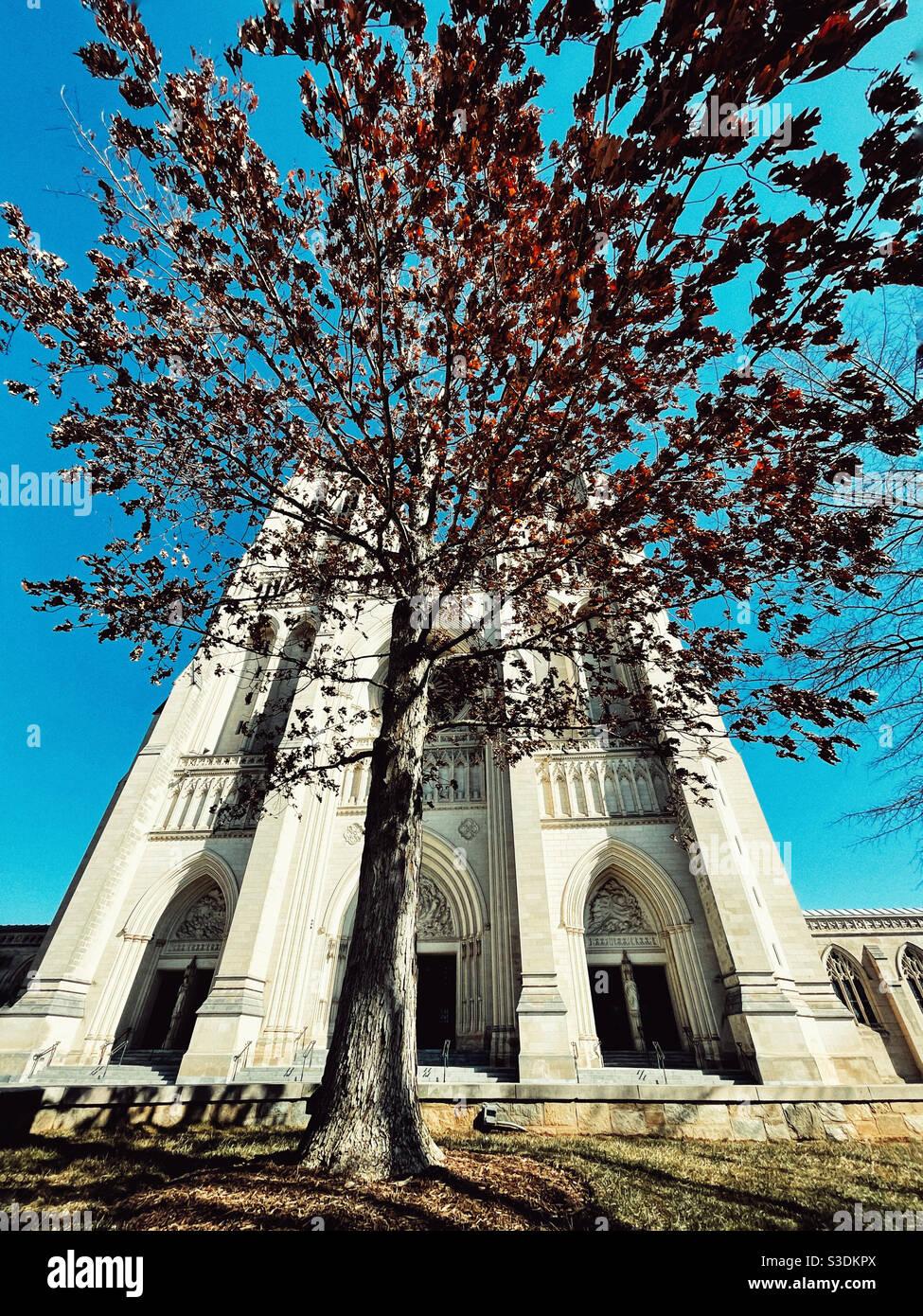 La Cattedrale Nazionale di Washington Foto Stock