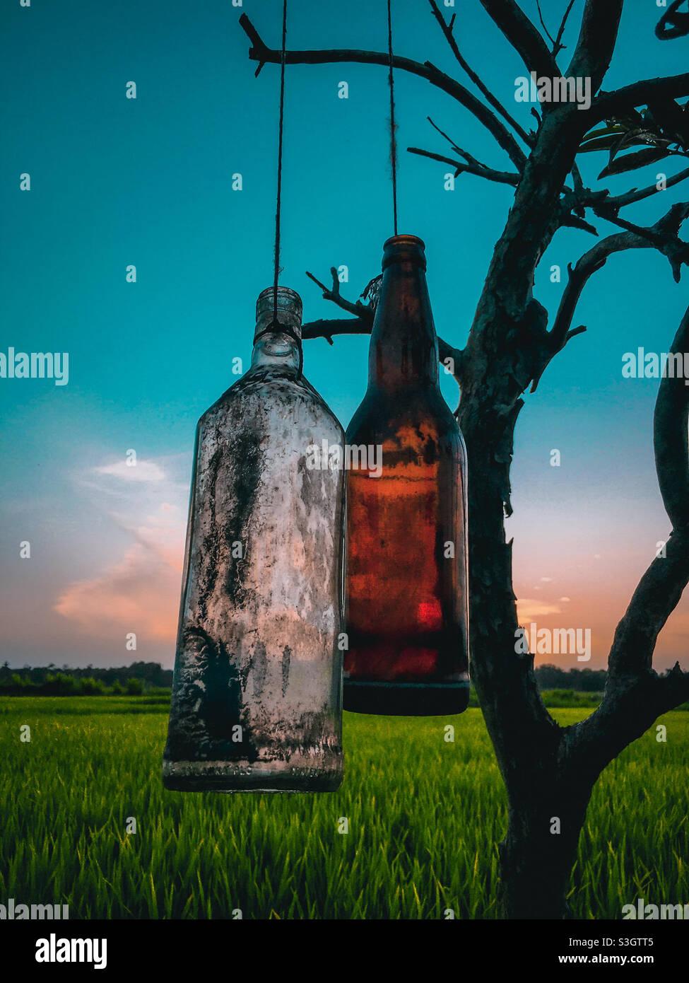Acquisizione di sera Foto Stock