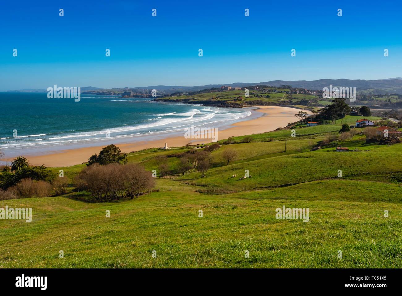 Prato di fresco verde erba. Oyambre beach, Comillas. Mare Cantabrico. Cantabria spagna. Europa Foto Stock