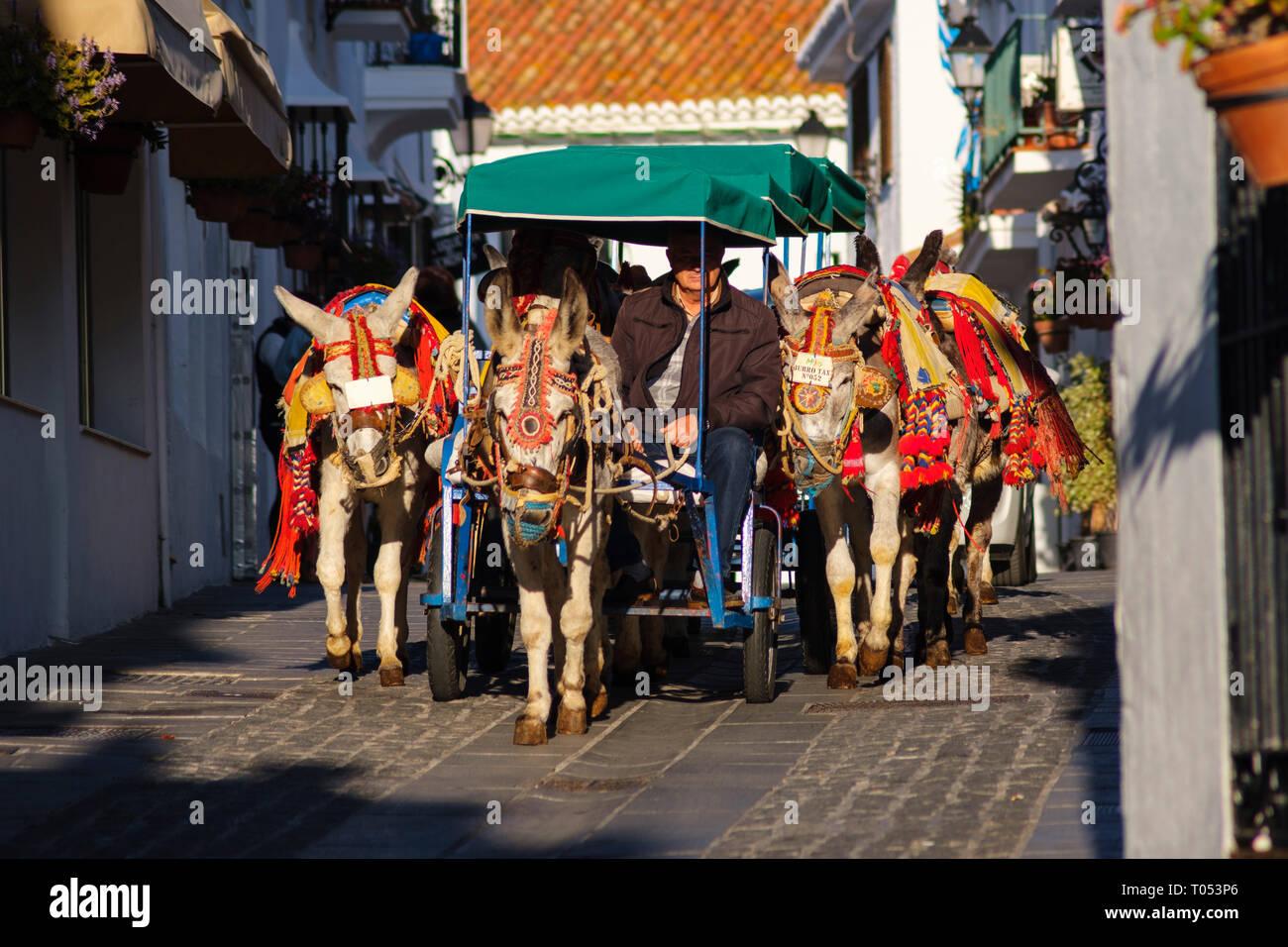 Famoso asino taxi. Attrazione per i visitatori di bianco, tipico villaggio di Mijas. Costa del Sol, Málaga provincia. Andalusia, Spagna del Sud Europa Immagini Stock