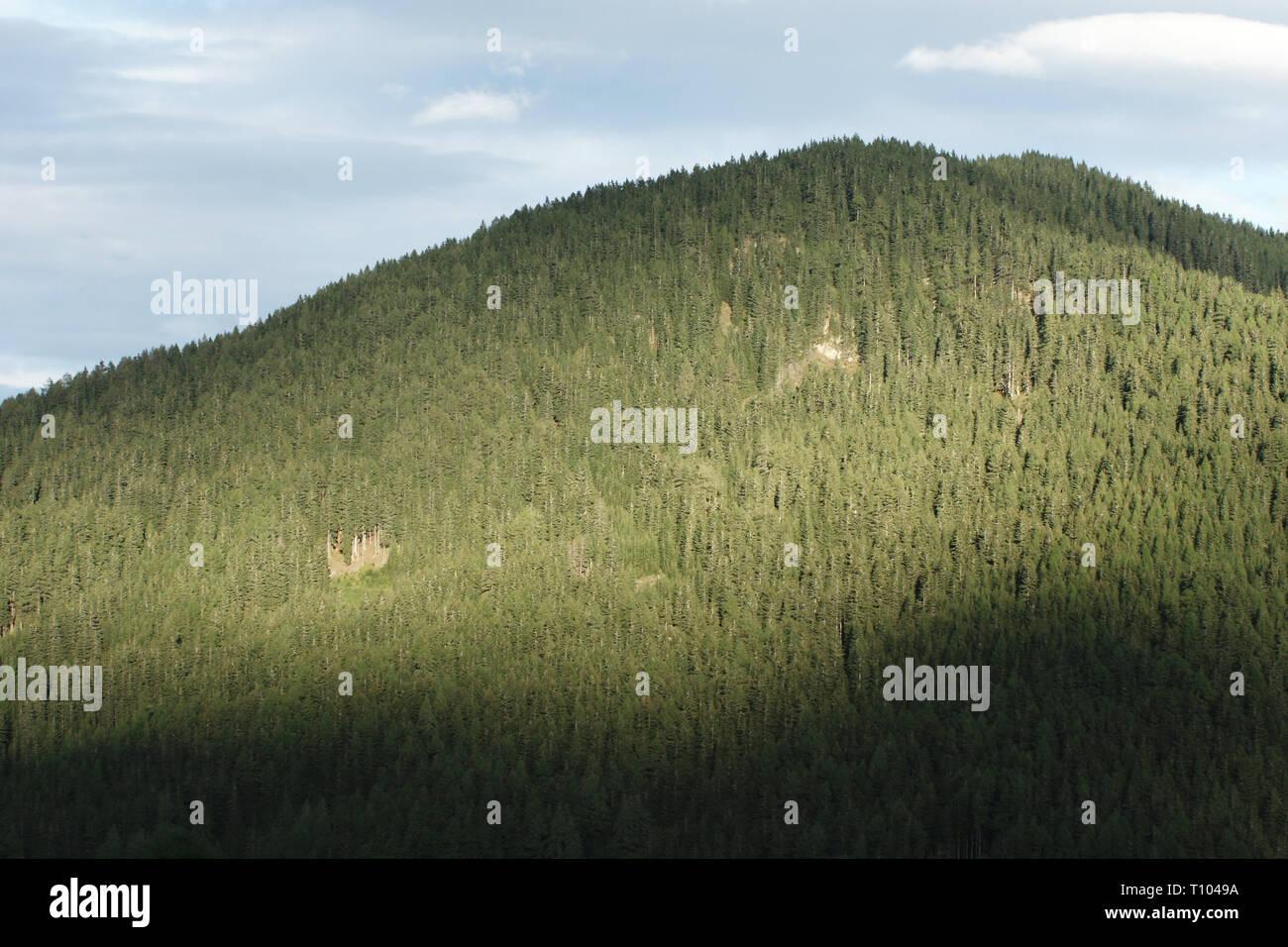 Montagne delle Dolomiti Immagini Stock