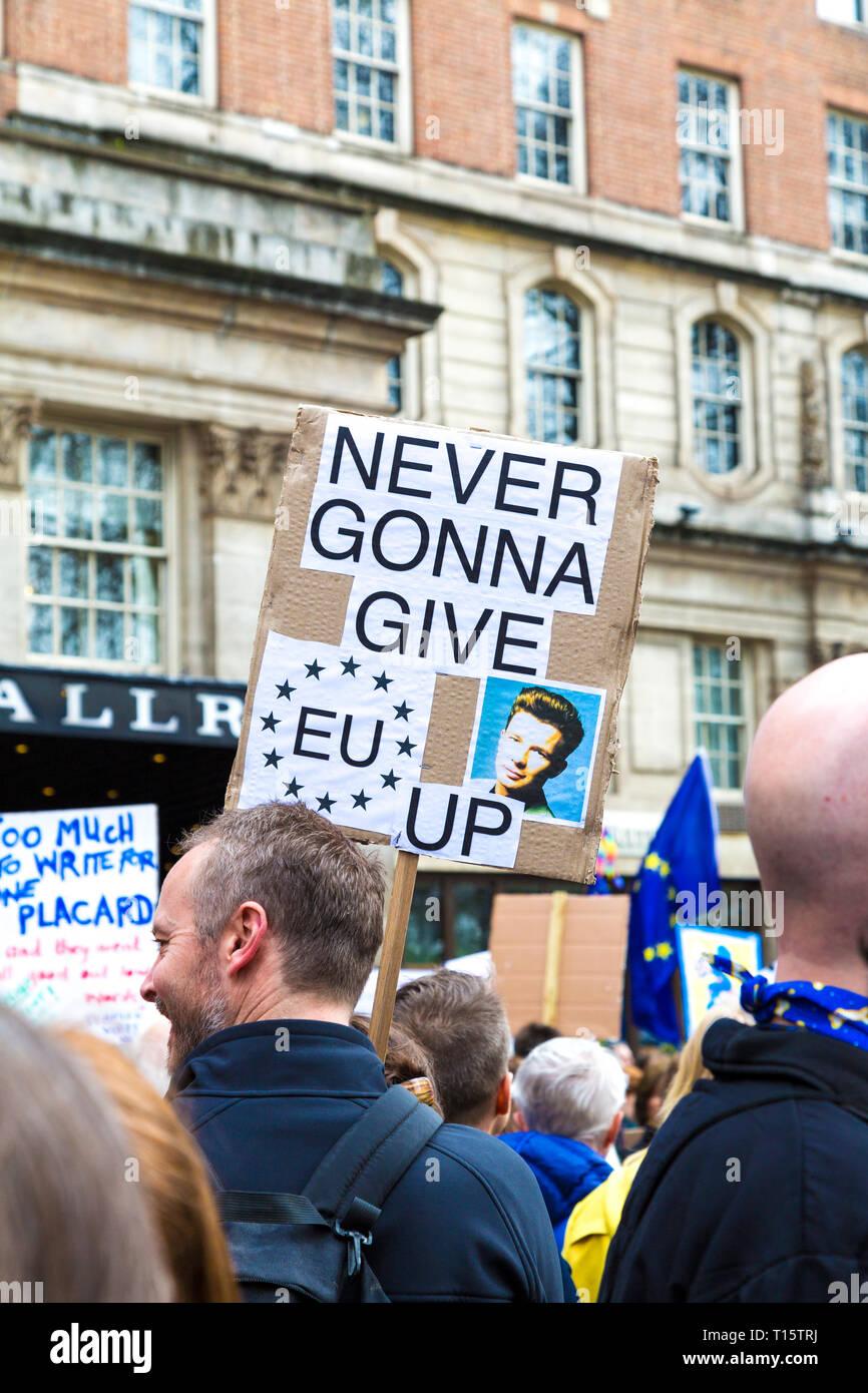 Londra, Regno Unito. 23 mar 2019. Oltre un milione di persone al mese di marzo per il voto popolare, per un secondo referendum su Brexit, persona in folla tenendo un 'Never Gonna dare UE fino' segno Credito: Nathaniel Noir/Alamy Live News Immagini Stock