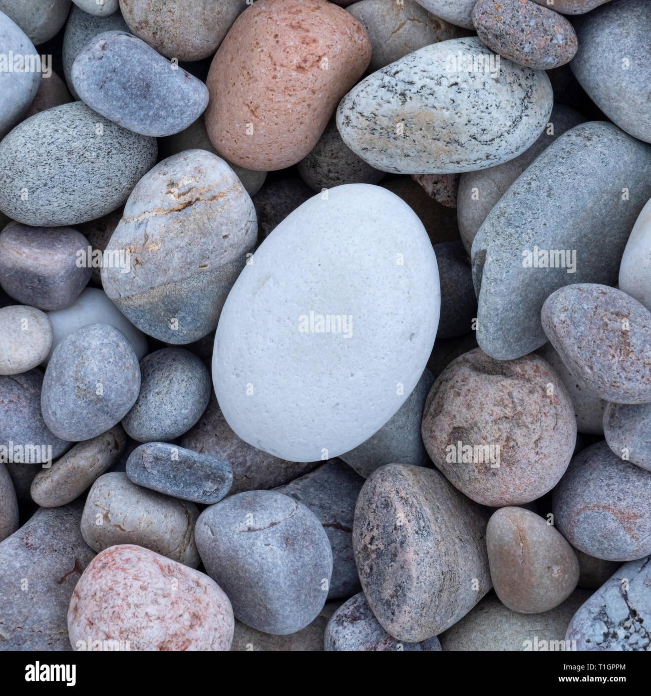 L'uovo, la spiaggia di ciottoli di Baia Spey, murene, sulla costa nord-orientale della Scozia, Regno Unito Immagini Stock