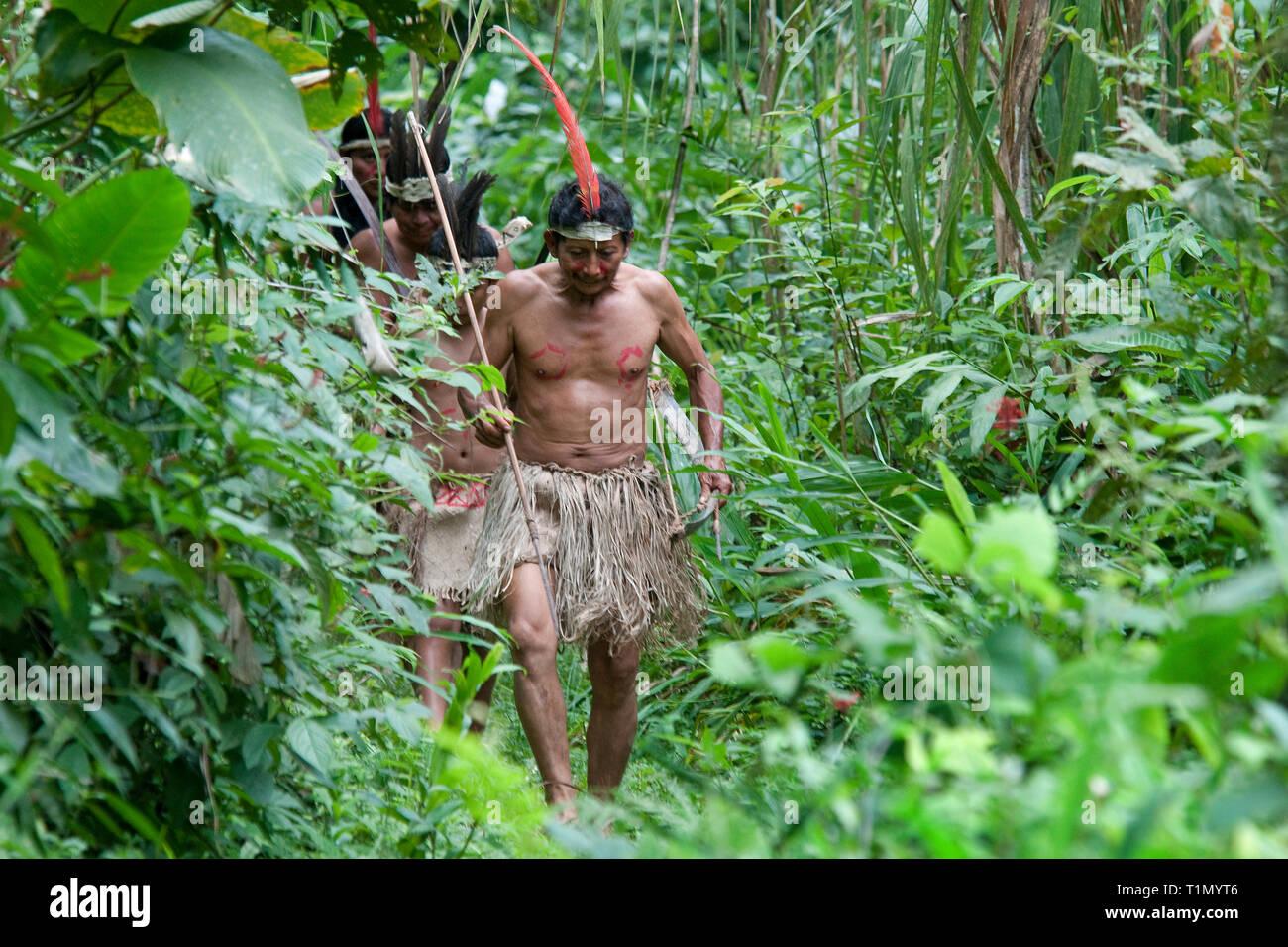 Maleku indiani nativi che mantiene la loro tradizione fino a oggi, Palente Magarita, Costa Rica Immagini Stock