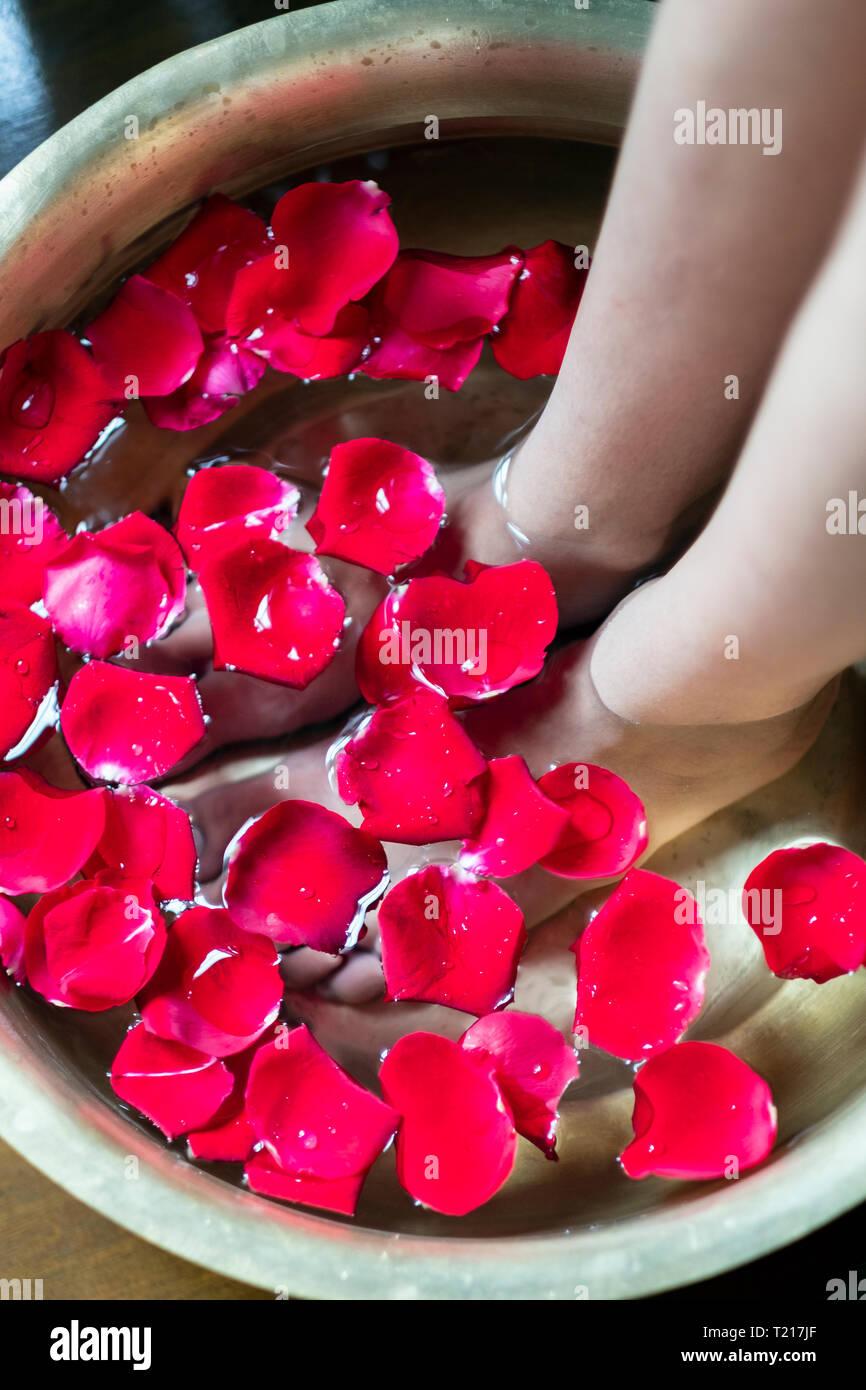 Una donna di piedi in ammollo un piede bagno riempito con petali di colore rosso Immagini Stock