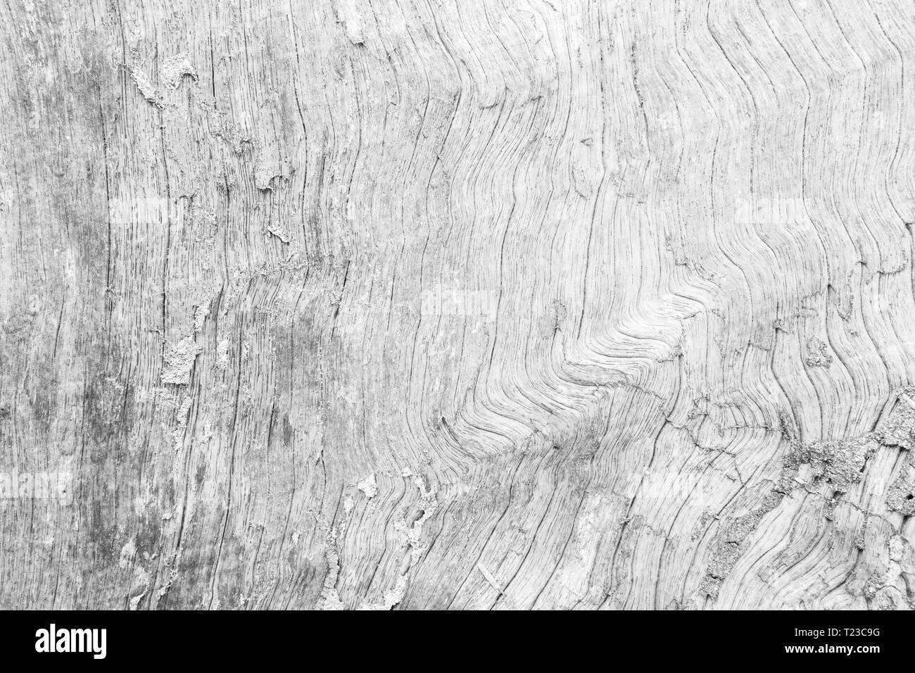 Grey Seamless Texture Immagini Grey Seamless Texture Fotos Stock