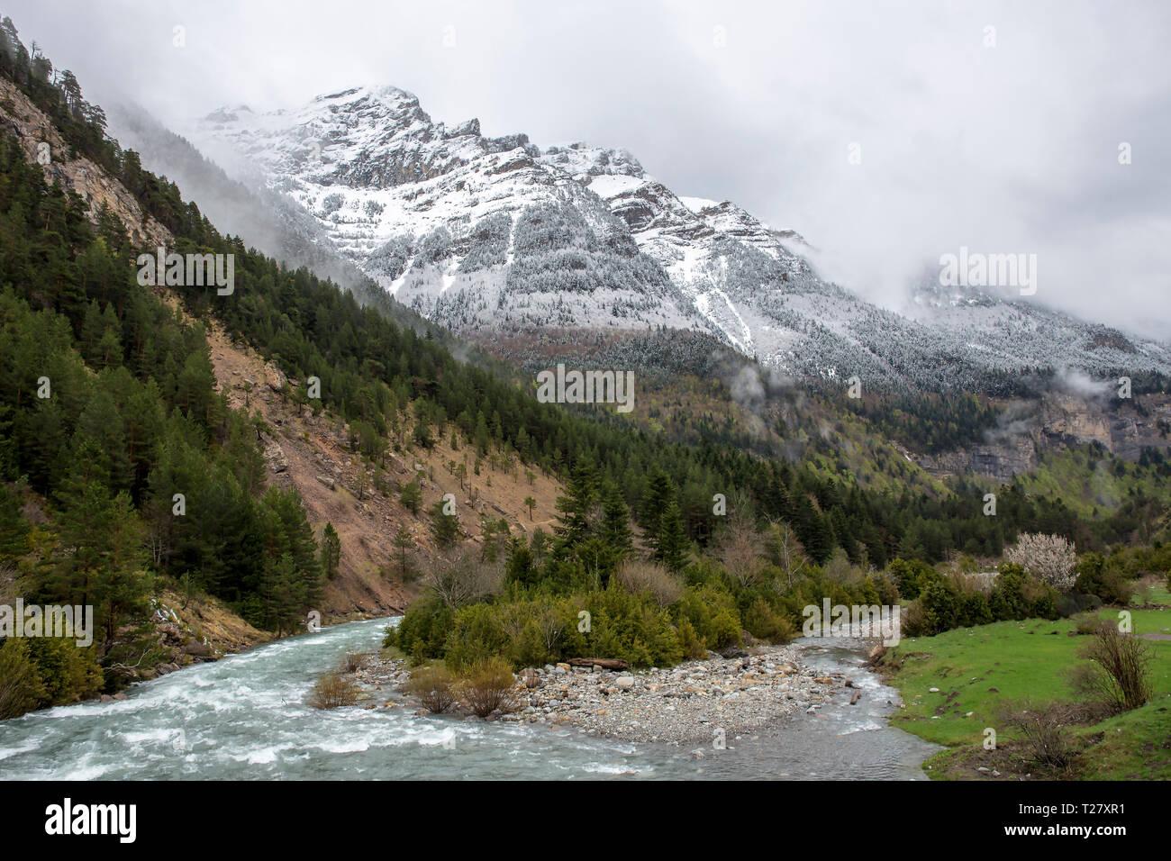sehr günstig gut aus x weltweit bekannt Ara fiume nella valle Bujaruelo con un po' di neve in ...