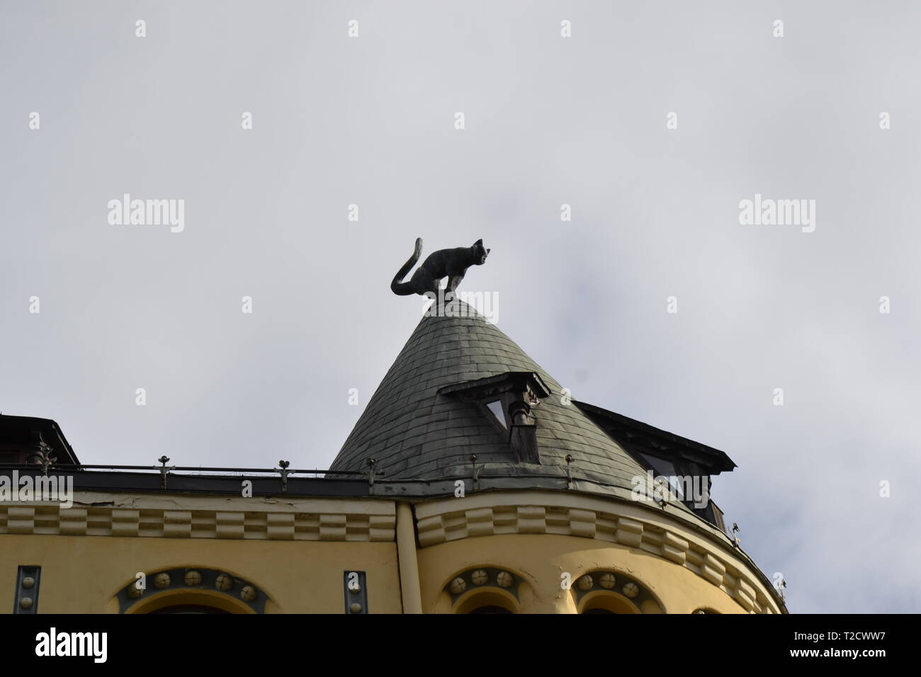 Riga Cat House Immagini Riga Cat House Fotos Stock Alamy