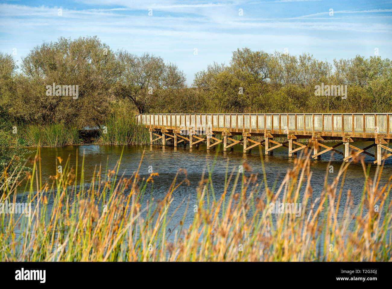 Rustico ponte di legno attraverso il lago, Oso Flaco Lago Area naturale del parco statale, California Immagini Stock