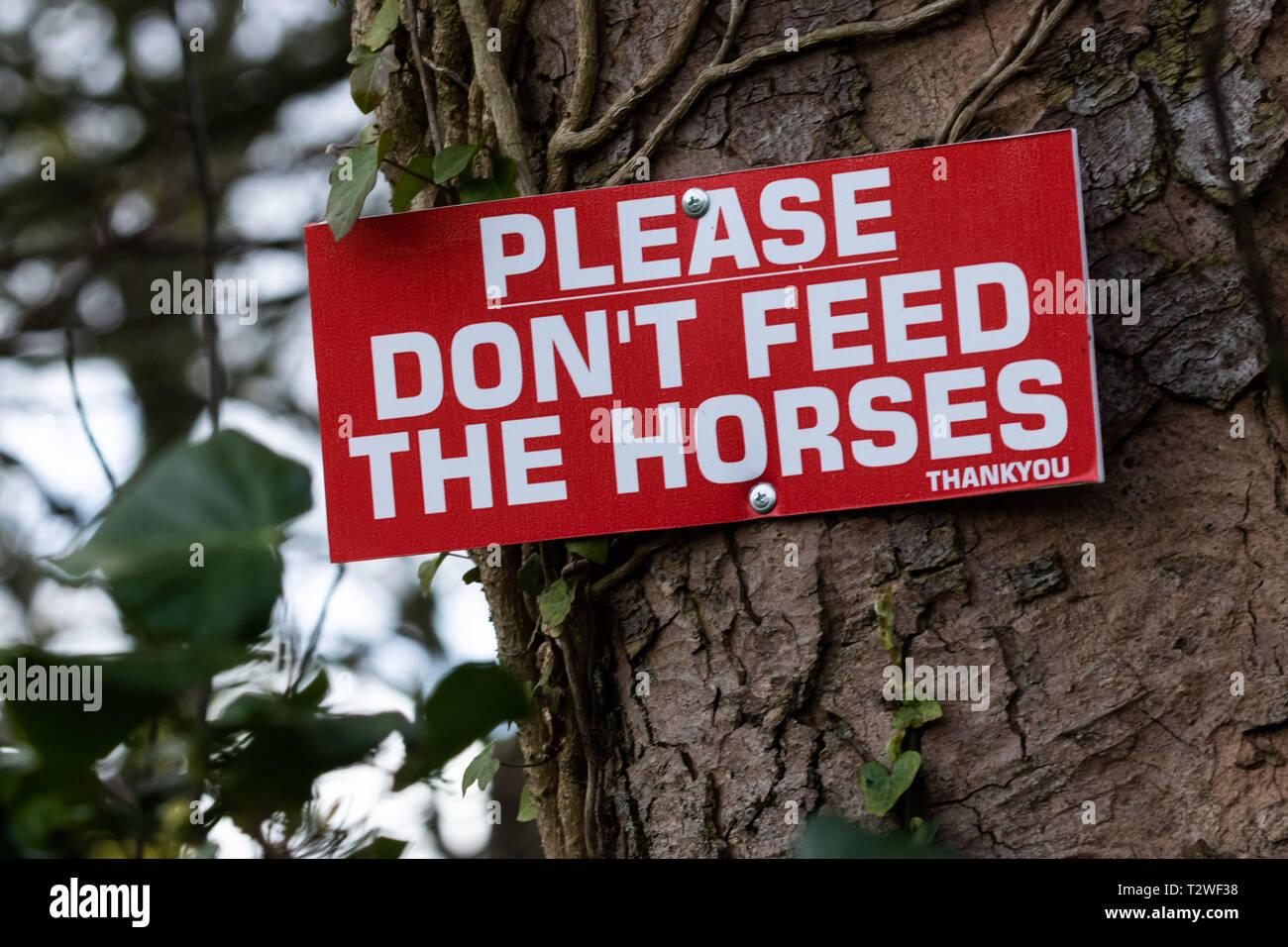 Gentile richiesta avviso fissata ad un albero 'non alimentare dei cavalli Immagini Stock