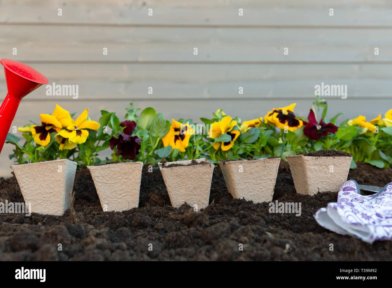 Giardinaggio E Fiori.Utensili Da Giardinaggio E La Molla Pansy Fiori Sulla Terrazza In