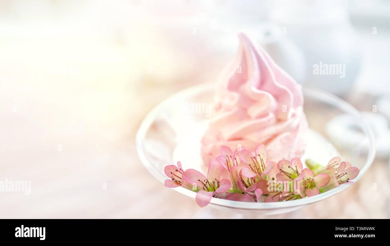 Fiori Delicati Kalanchoe Sullo Sfondo Rosa Delicato Apple