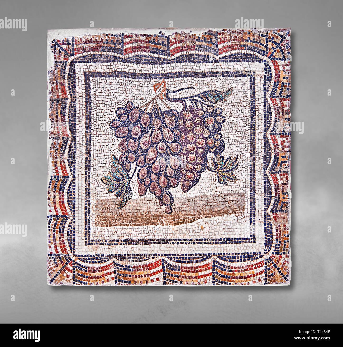 Iii secolo mosaico romano del pannello nero e uva bianca. Da Thysdrus (El Jem), Tunisia. Il Museo di Bardo, Tunisi, Tunisia. Sfondo grigio Immagini Stock