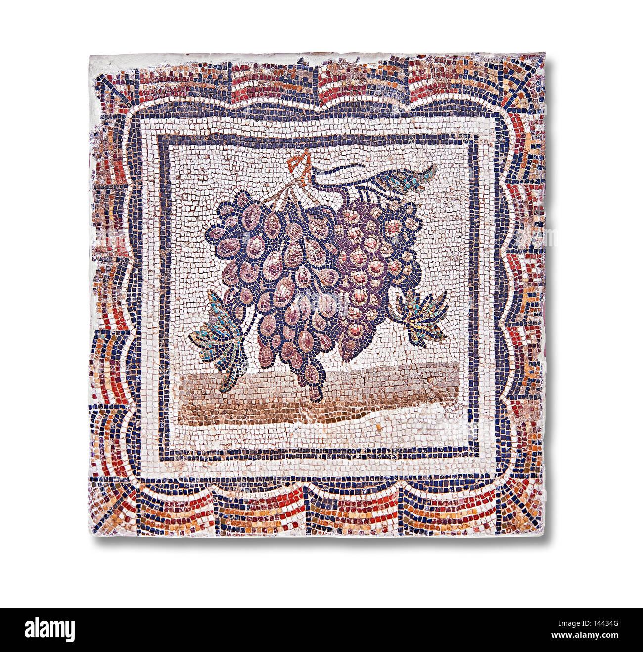 Iii secolo mosaico romano del pannello nero e uva bianca. Da Thysdrus (El Jem), Tunisia. Il Museo di Bardo, Tunisi, Tunisia. Immagini Stock