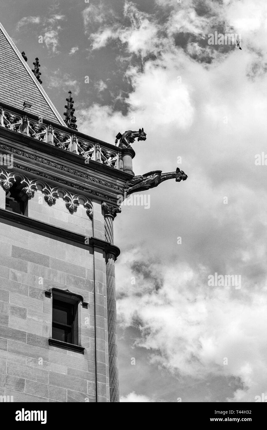 Due doccioni sembrano urlare nel vuoto, come un uccello vola overhead, al Biltmore Estate in Asheville, NC, Stati Uniti d'America Immagini Stock