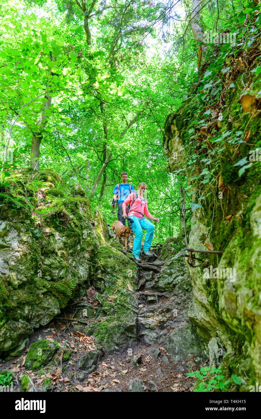 Escursionismo in un entusiasmante e impegnativo percorso nella foresta Immagini Stock