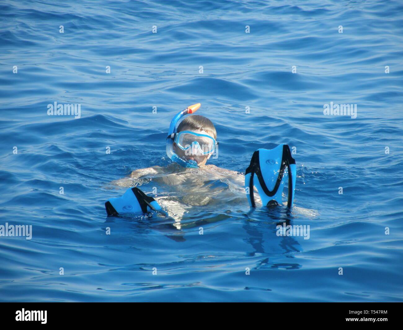 Immagine di un uomo lo snorkeling in mare ammirando le barriere coralline e i pesci.Sharm el Sheik Egitto. Immagini Stock