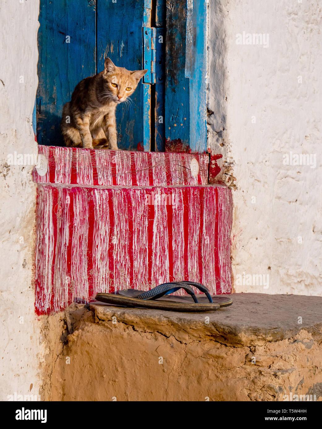 Assonnato cat e flip-flop sul tradizionalmente porte dipinte di un Borgo Casa al Supi nella valle Saryu dell India settentrionale Immagini Stock