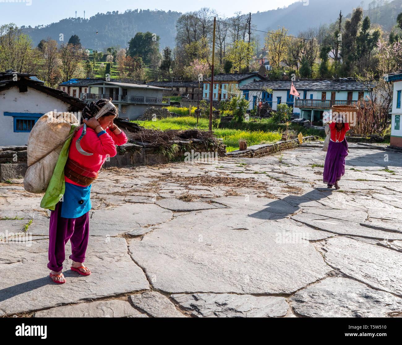 Le donne che trasportano carichi pesanti attraverso il villaggio himalayana di Supi nell'Uttarakhand provincia dell India Immagini Stock