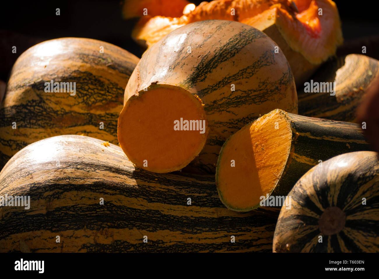 Zapallo o calabaza, fruto de origen americano difundido en la gastronomía de todo el mundo Immagini Stock