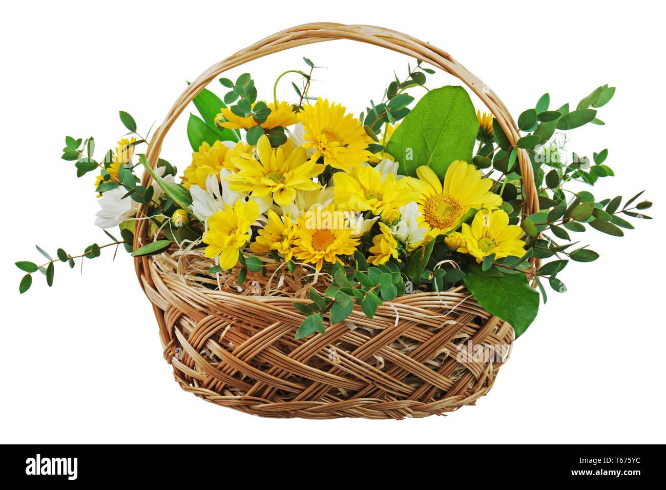 Mazzo di fiori colorati da gerbere in vimini bask regalo Immagini Stock