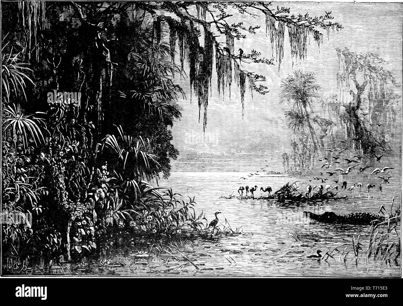 """Incisione di terra di Indiani Seminole, dal libro """"Una storia popolare degli Stati Uniti d'America, dai tempi degli aborigeni alla presente giorno"""" di John Clark Ridpath, 1893. La cortesia Internet Archive. () Immagini Stock"""