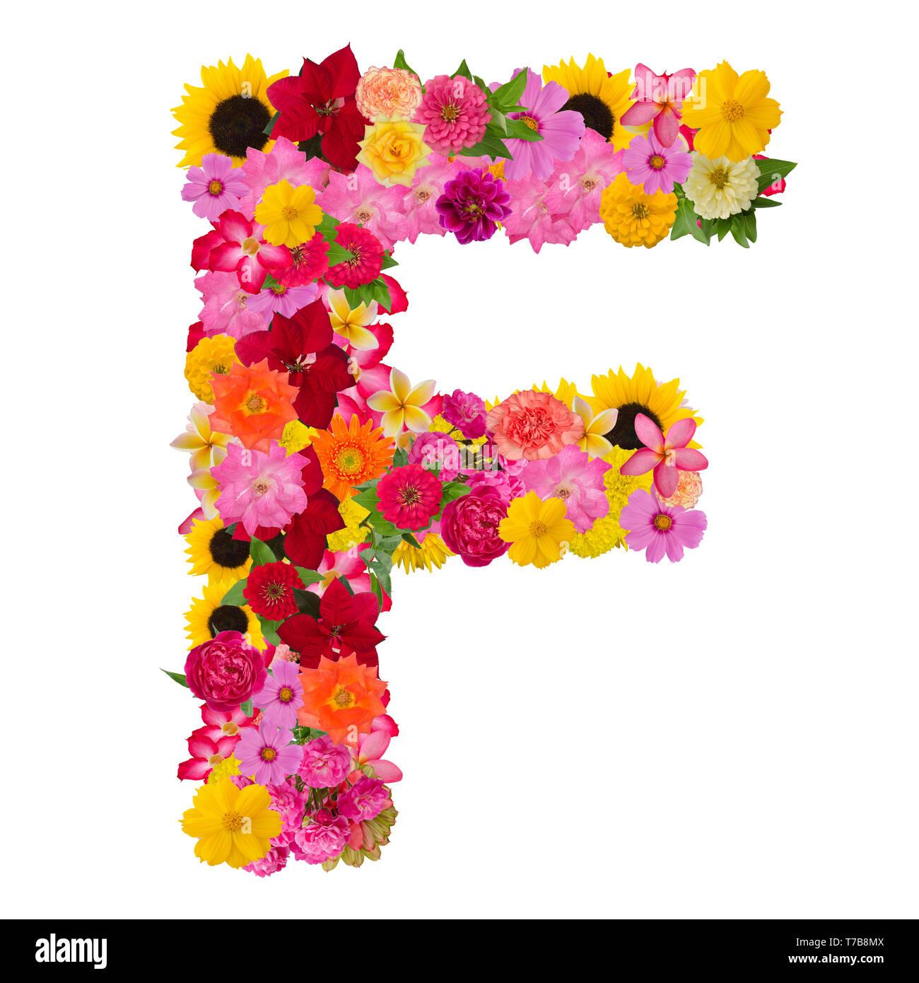 Fiori Con La F.Lettera F Alfabeto Con Fiore Abc Tipo Di Concetto Come Isolato Del