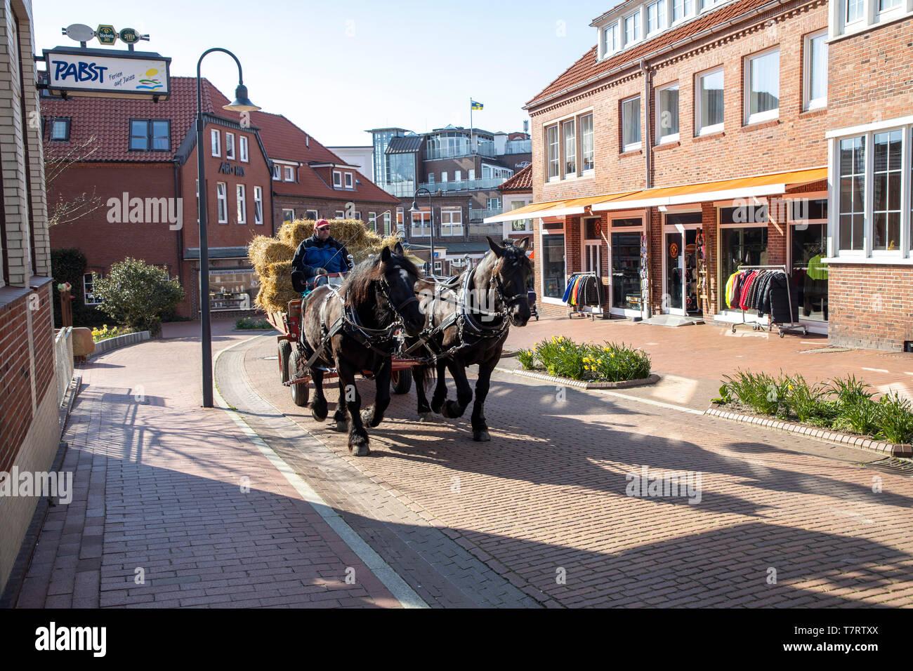 Isola del Mare del Nord di Juist, Frisia orientale, isola-tipica carrozza trainata da cavalli, come mezzo di trasporto, Bassa Sassonia, Germania, Immagini Stock