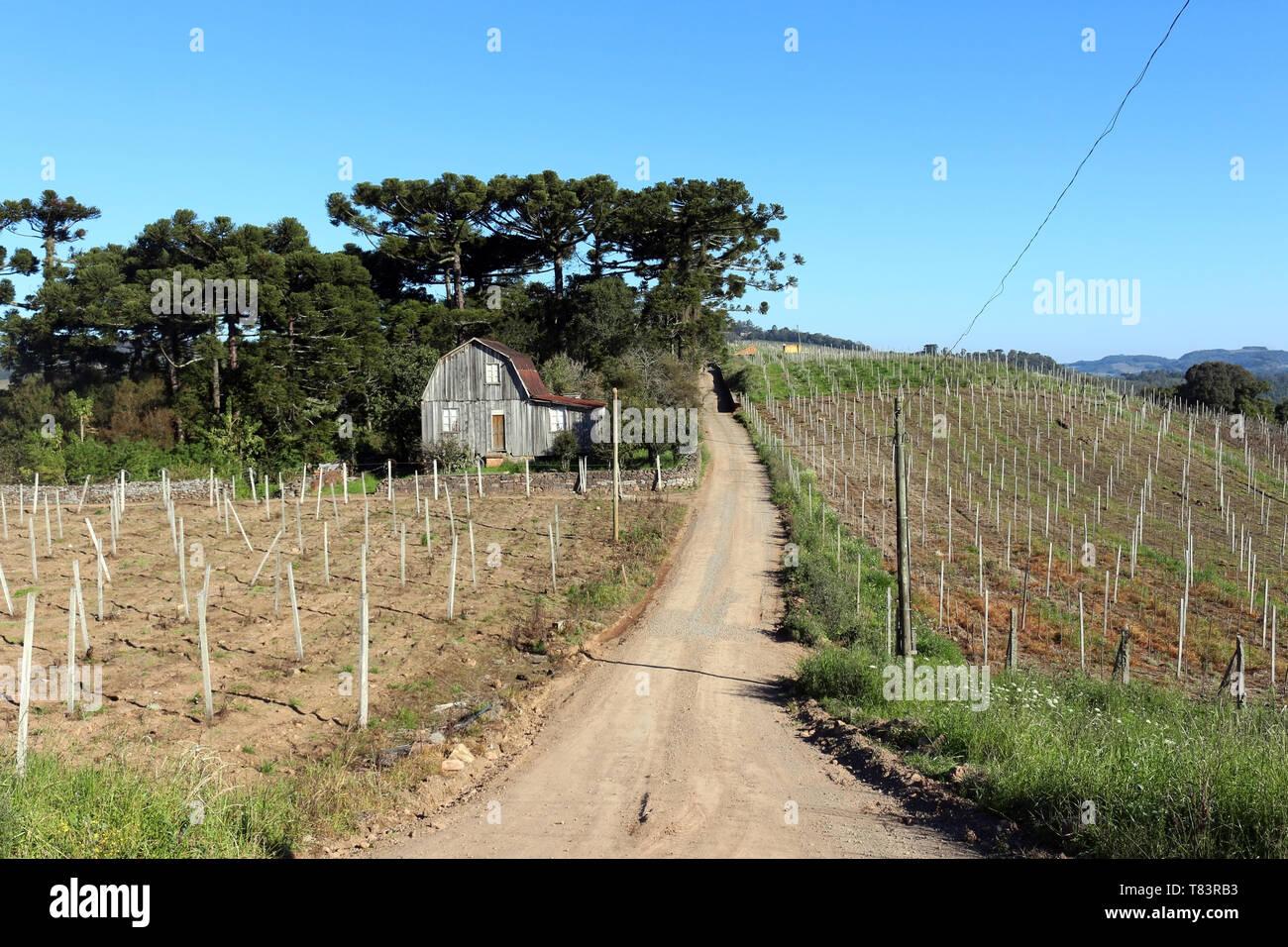 Regione Sud del Brasile, vecchia casa e picchiato road. Tradizioni con influenze italiane. Immagini Stock