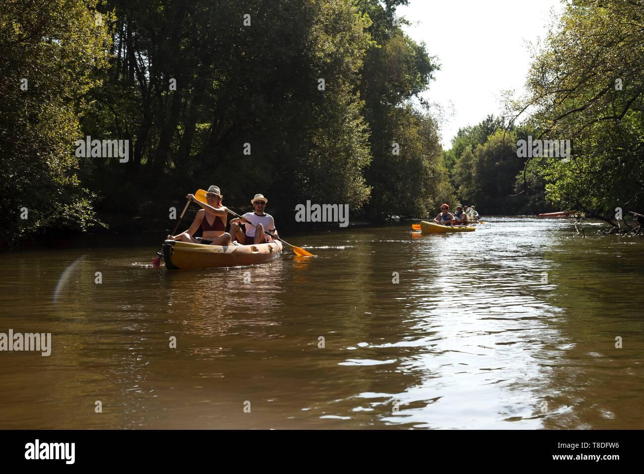 Francia, Gironde, Val de L'Eyre, Parc Naturel RÚgional des Landes de Gascogne, Salles, Leyre, sul fiume in canoa sul fiume Immagini Stock