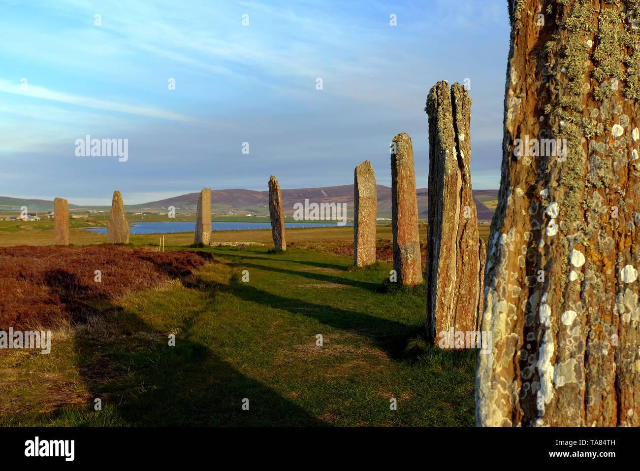 Isole Orcadi, Continentale, il Neolitico pietre permanente dell'anello di Brodgar al tramonto Scozia 8 Maggio - 19th. Viaggio attraverso la Scozia Foto Samantha Z Foto Stock