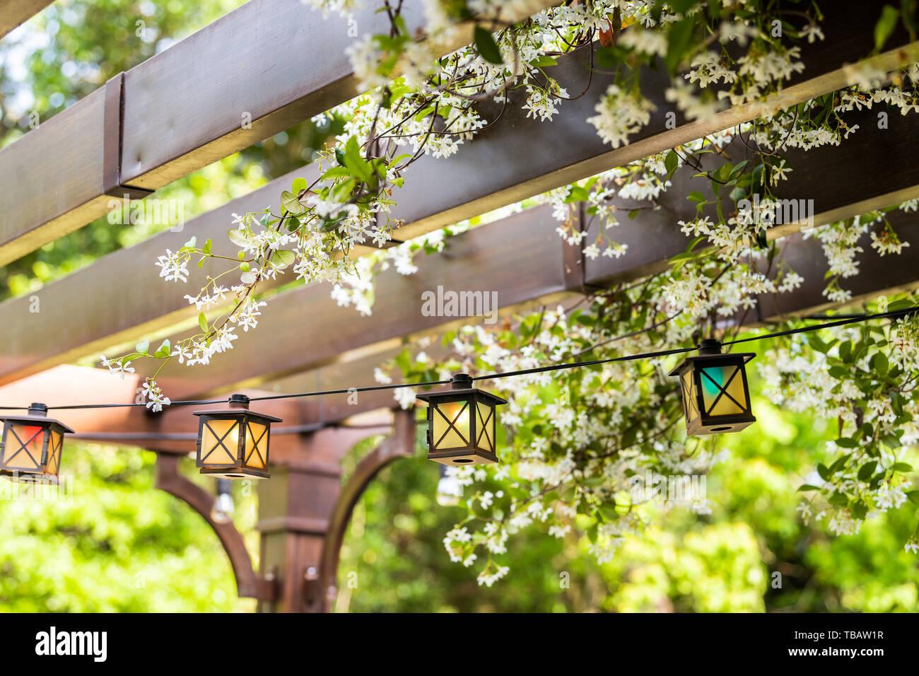 Luci Per Tettoia In Legno patio esterno giardino di primavera nel cortile di casa con